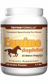 Equine-Dophilus is a powdered probiotic supplement formulated for horses to support intestinal health and help strengthen overall immune function..