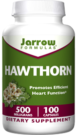 The powerful antioxidants in Hawthorn protect the cells of the cardiovascular system from free radicals..
