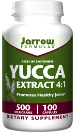 Traditionally, Native Americans used the juice of the yucca plant to improve joint health..