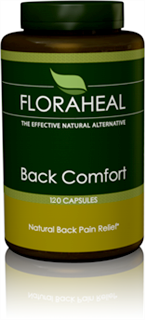 Back Comfort contains Arnica Montana, which is the most commonly used homeopathic medicine for relief of muscular pain..